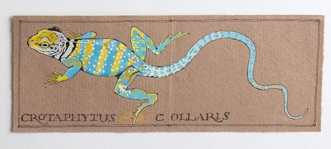 Lizard on Brown Paper
